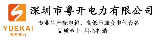 深圳市粤开电力有限公司